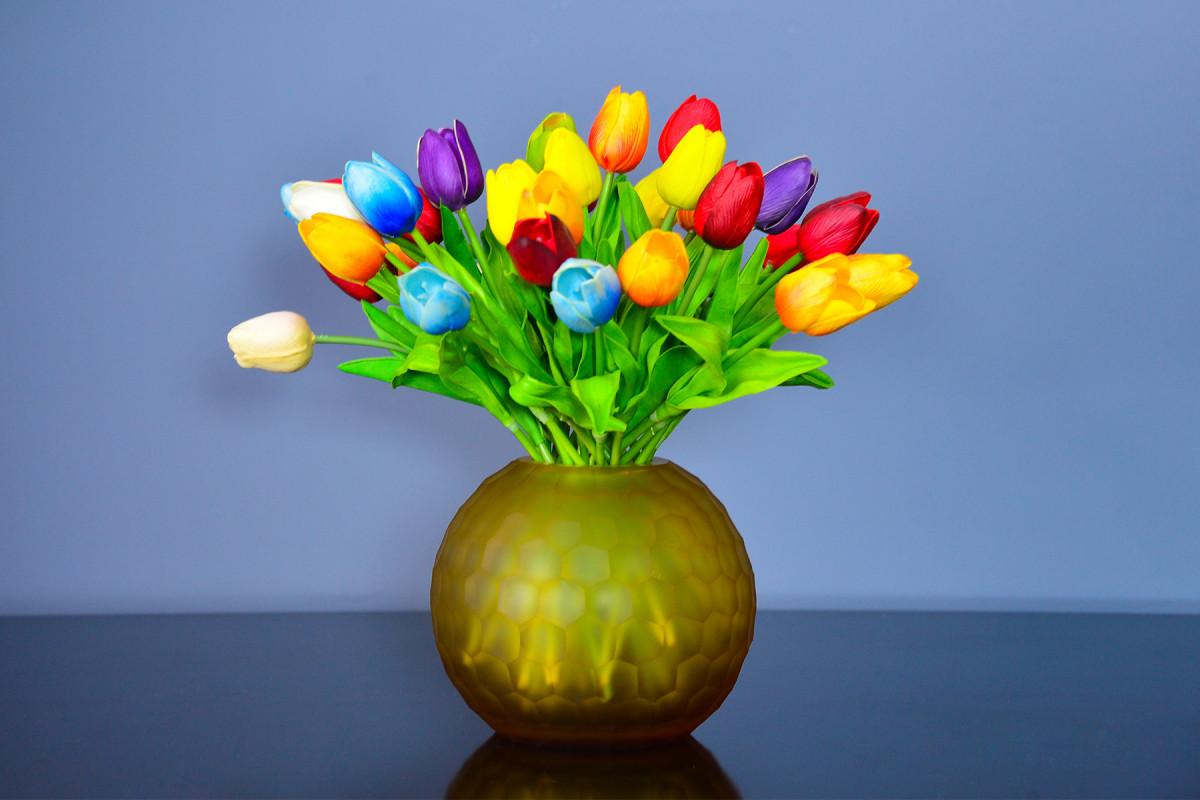 Hoa Tulip, biểu tượng quyến rũ của đất nước Hà Lan