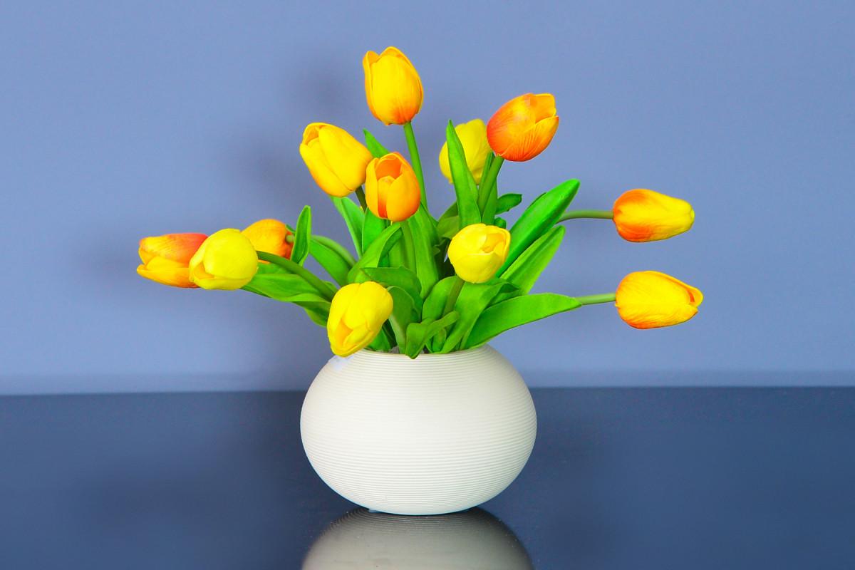 Hoa Tulip, biểu tượng quyến rũ của đất nước Hà Lan (phần 2)